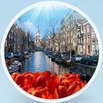 Castiga o excursie la Amsterdam si 100 baxuri x 24 doze de bere Ursus Cooler