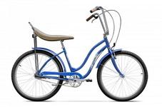Castiga o bicicleta Pegas Strada