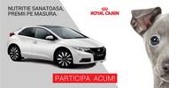 Castiga o masina Honda Civic, 4 smartphone Lumia 830 sau 62 x hrana pentru o luna Royal Canin