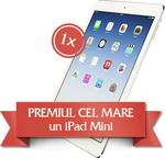 Castiga un iPad Mini, 4 brazi naturali de Craciun si alte 91 de premii